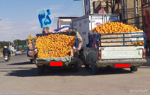میوه فروشان سیار سبزوار ساماندهی شدند