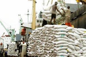 کشاورز: واردات برنج 48 درصد کاهش یافته است
