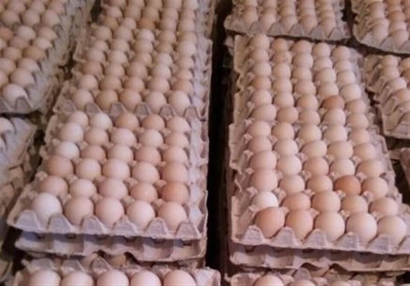 قیمت هر شانه تخممرغ ۳۱ هزار تومان تعیین شد