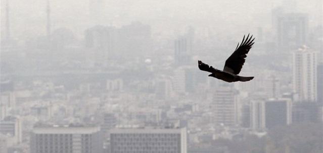 آلایندگی جهانی ناشی از مصرف سوخت، پارسال به اوج خود رسید