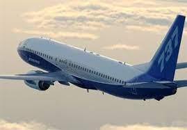 فرود اضطراری هواپیمای بوئینگ ۷۳۷ هندوستان در زاهدان