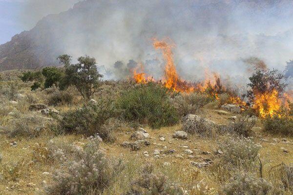 پدیده آتش سوزی این بار در مزارع و باغات سبزوار