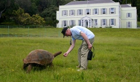 جاناتان لاکپشت غولپیکر 188 ساله شد