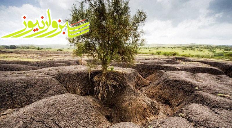خسارت ۳ هزار میلیارد تومانی فرسایش بادی به منابع زیست انسانی نگران کننده است