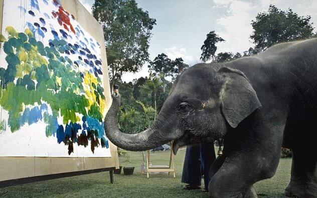 خلق نقاشی با کمک فیلها