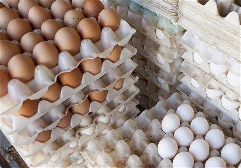 نرخ هر شانه تخممرغ ۳۴ هزار تومان تعیین شده است