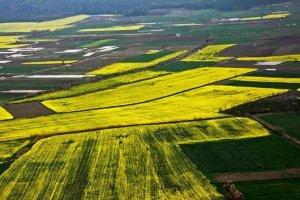۷۰ درصد موقوفههای سبزوار مستعد جهش تولید است