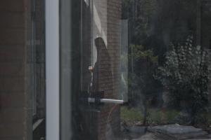نمایش «سایههای بیخورشید» در سینماهای آمریکا و کانادا