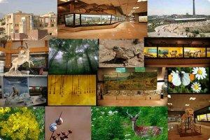 فردا بازدید از موزه تنوع زیستی رایگان است