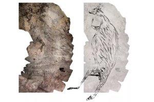 کشف قدیمیترین سنگنگاره استرالیا