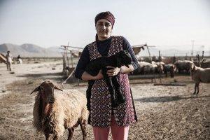 اعطای تسهیلات 140 میلیارد تومانی طی 3 سال به عشایر استان