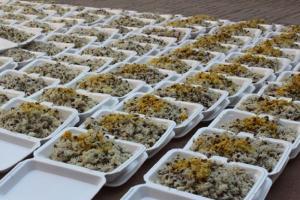 توزیع 30 هزار پرس غذا به مناسبت عید غدیر در سبزوار