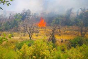 آتش سوزی - زنگخطر در ابیانه تاریخی