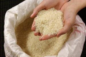 ممنوعیت ترخیص برنج از گمرک از ابتدای شهریور