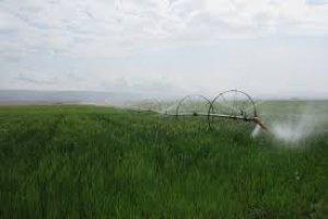 تجهیز 641 هکتار از اراضی سبزوار به آبیاری نوین