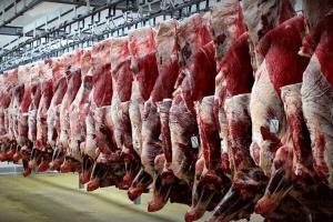 افزایش 19 درصدی تولید گوشت قرمز
