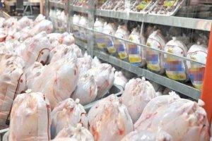 قیمت مرغ دوباره در حال افزایش است