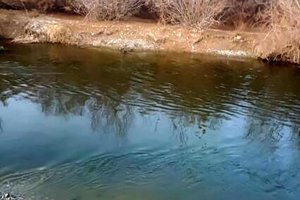 غرق شدن یک کودک دو ساله در منطقه زیار