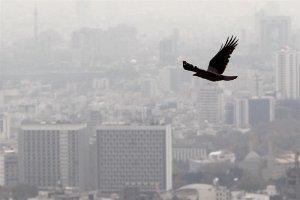 هشدار آلودگی ۵ روزه هوا در ۸ استان