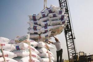 کاهش تعرفه واردات برنج به میزان ۴ درصد