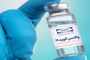 حال تزریق کنندگان واکسن ایرانی کرونا چطور است؟