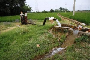 صرفه جویی بیش از ۴ میلیون متر مکعب آب در دشتهای سبزوار